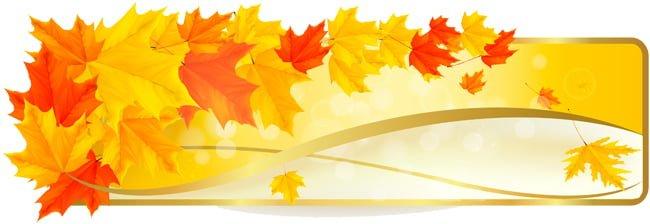 Красиви през есента 1